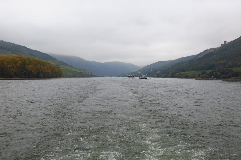 Along the Upper middle rhine valley in Germany