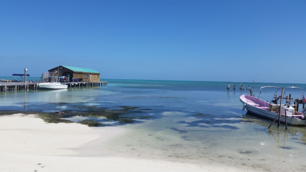 Why You Should Visit Belize