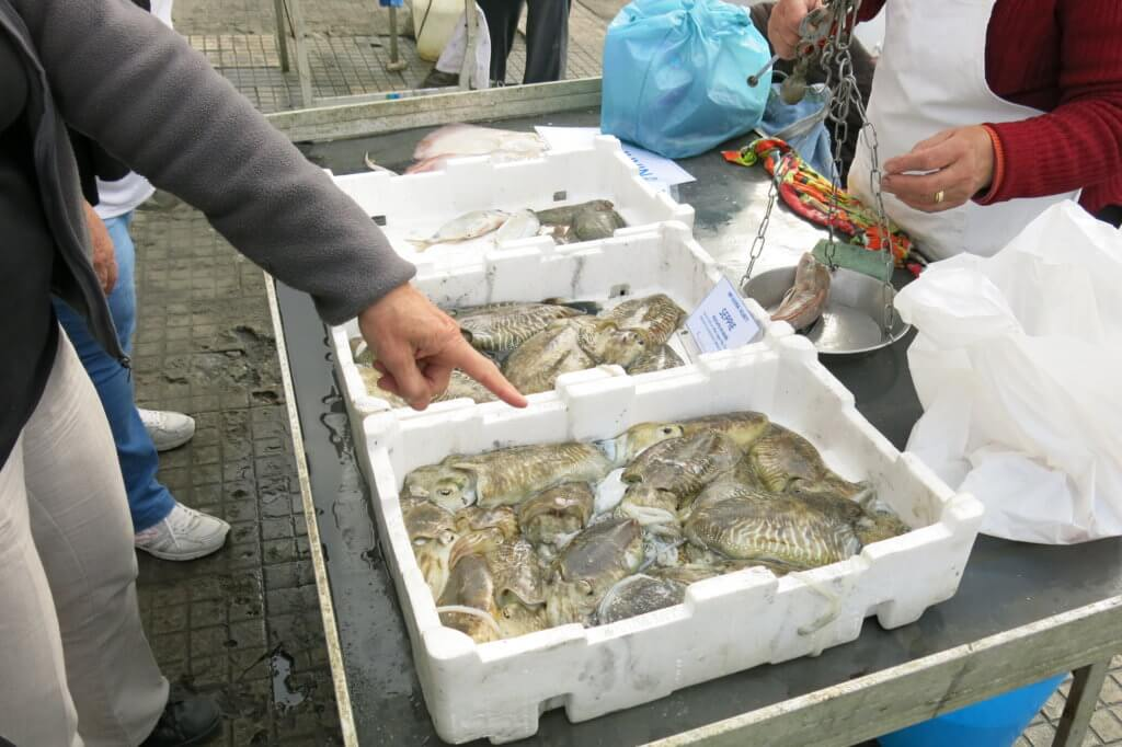 Wild Seafood at Viareggio Pier, Italy