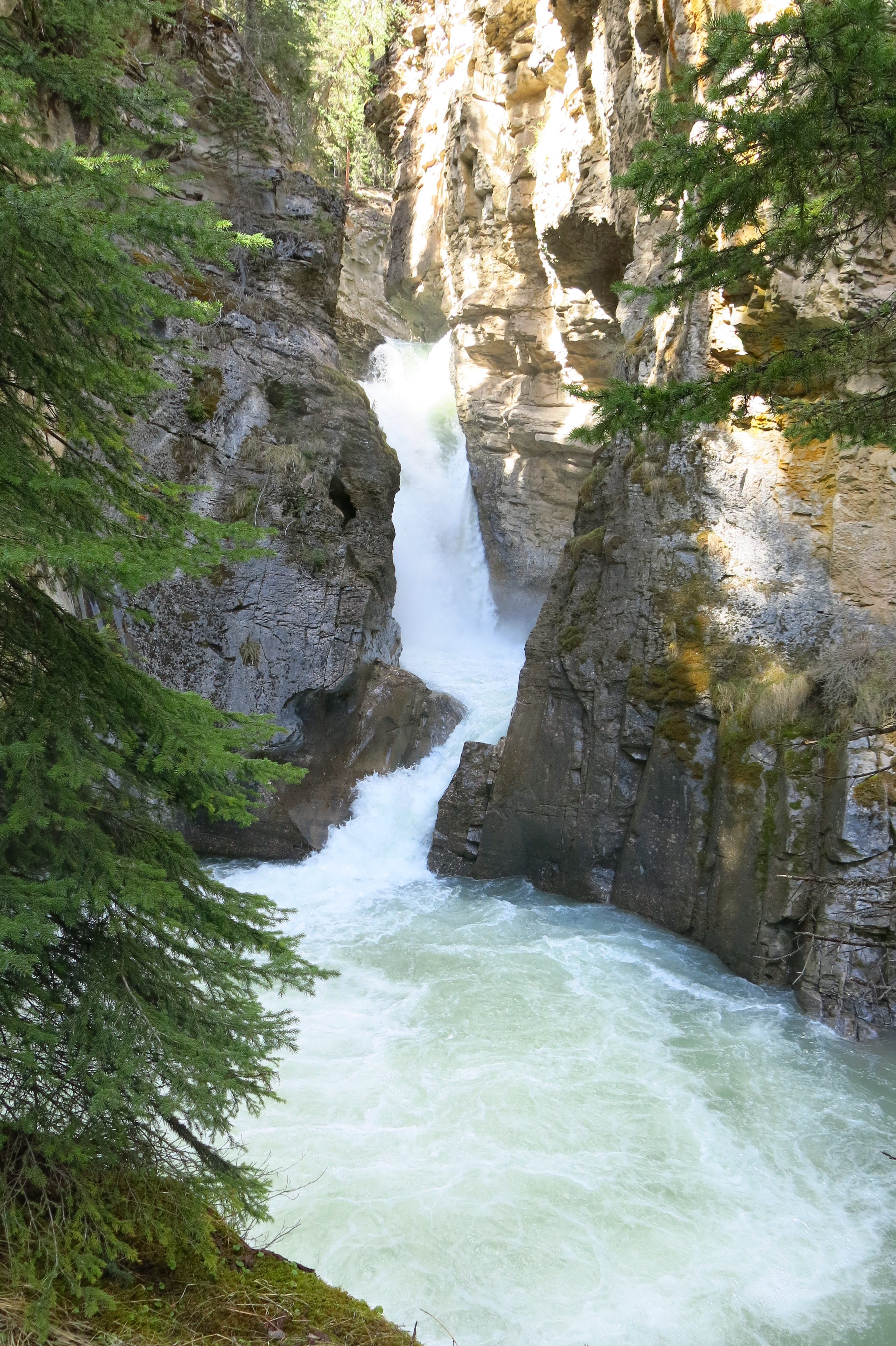 Trail to Lower Falls at Johnston Canyon