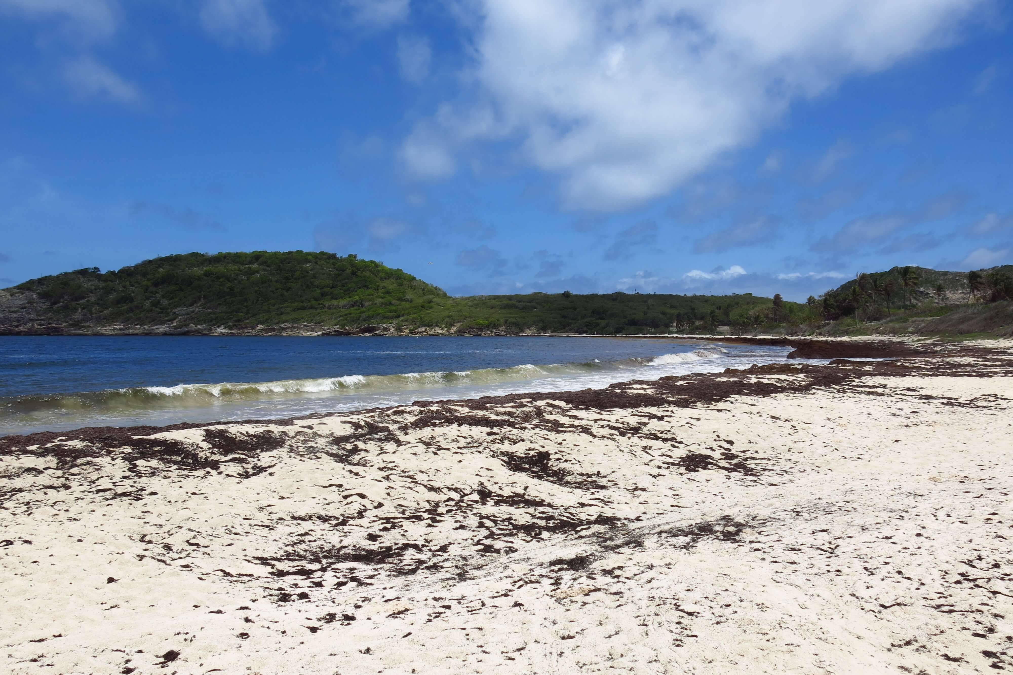 Half Moon Bay National Park in Antigua
