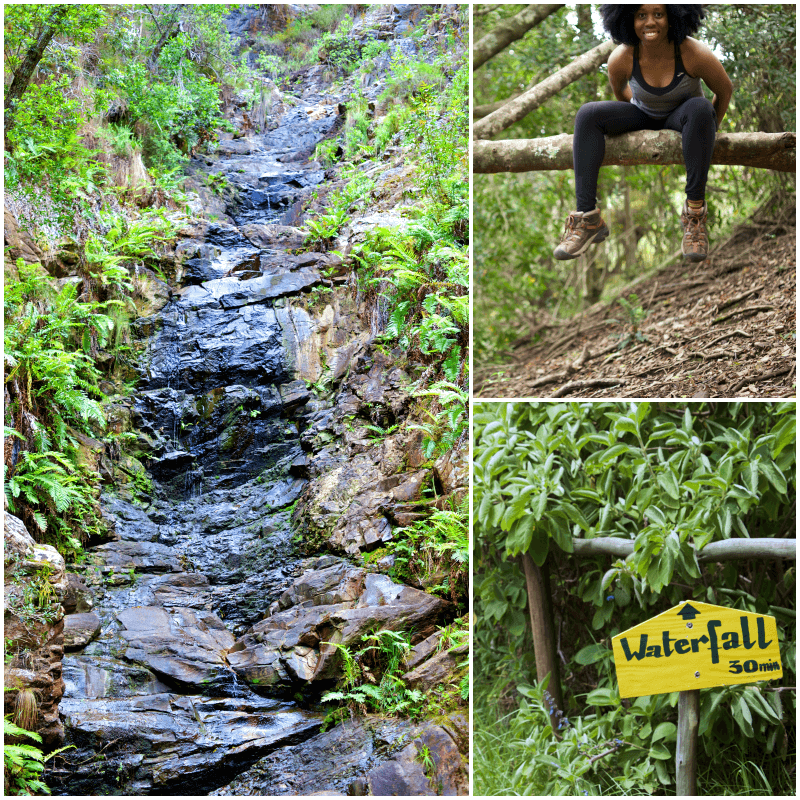 Waterfall Hike at Wild Spirit Backpackers (Garden Route)