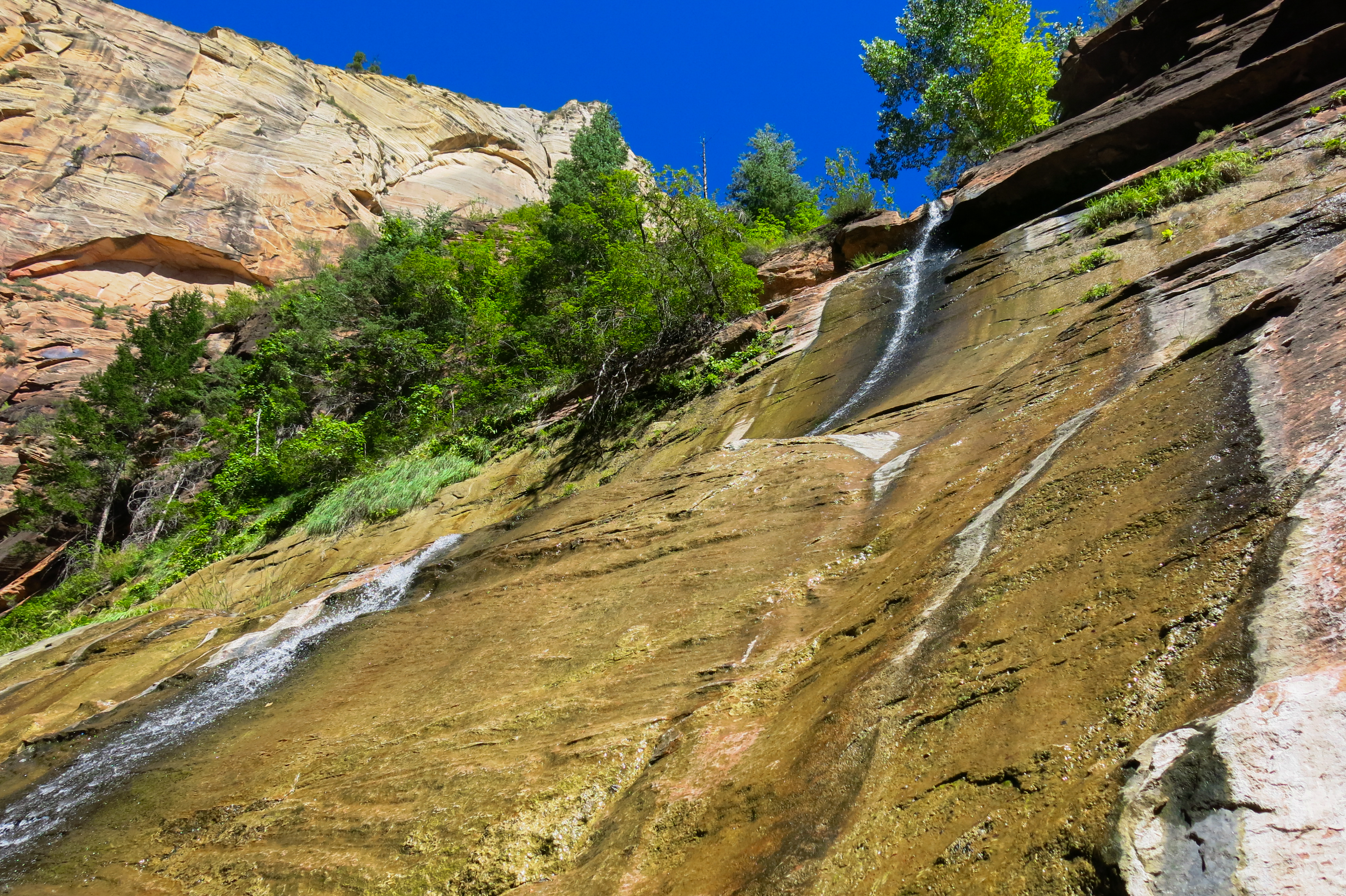 Mystery Canyon Waterfall, Zion National Park