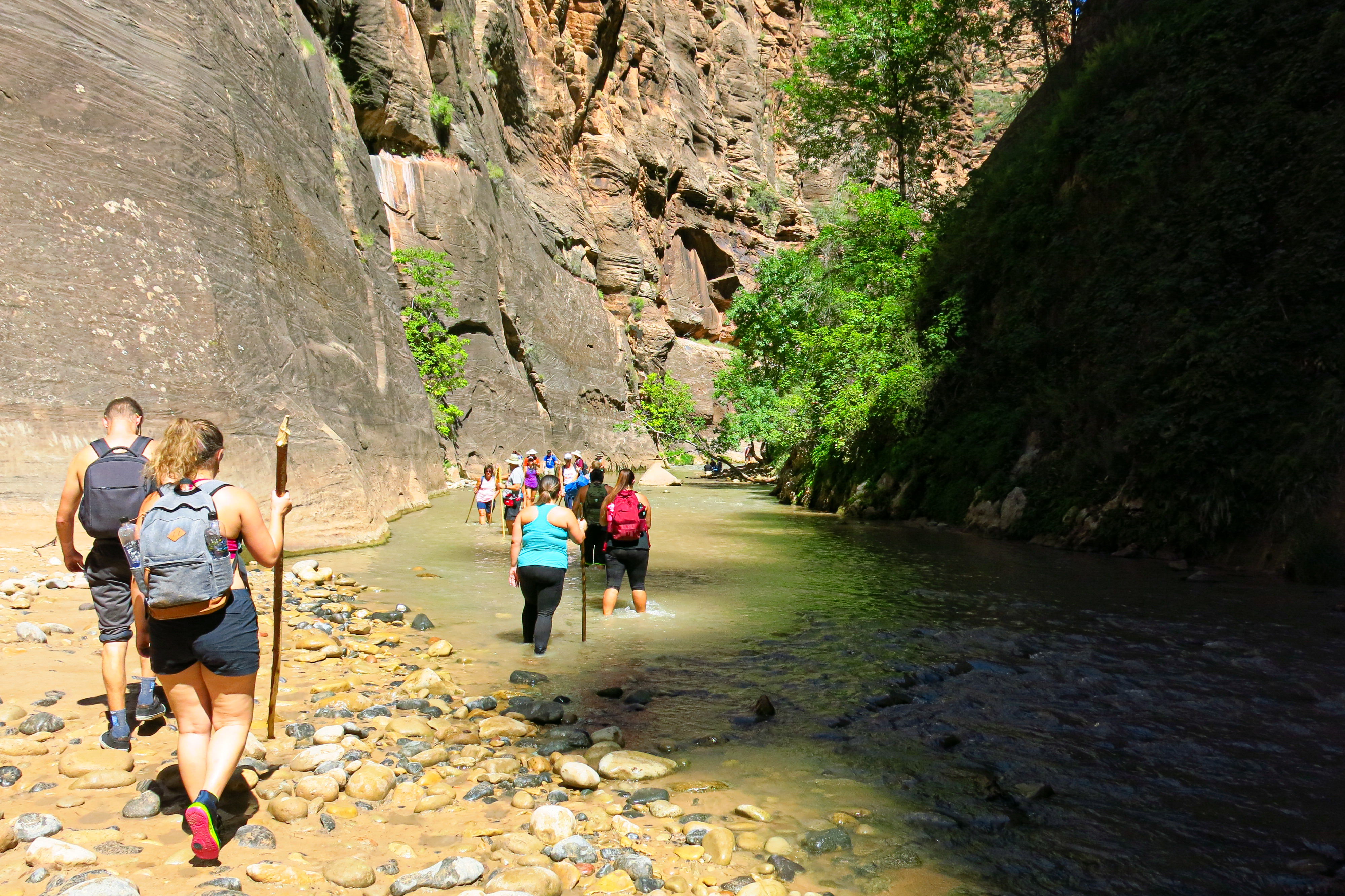 Zion Narrows Bottom Up