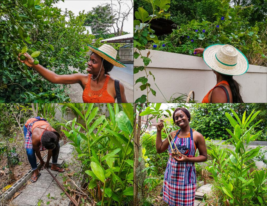 Harvesting fresh ingredients from Darling's garden